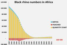 Declining Black Rhino Numbers S